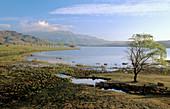 Drakensberg scene, Lifton Lake, Sani Valley Lodge, Underberg, KwaZulu-Natal, South Africa