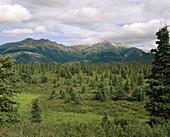 Alaska Range mountain. Alaska. USA.