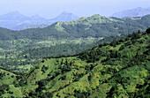 View of Satpuda mountain range. Mahabaleshwar, Maharashtra. India