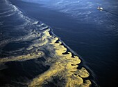 Algal bloom in the Baltic Sea seen from a light aeroplane. Sweden.