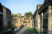 The palaestra (gymnasium and wrestling place), ruins of the old Roman city. Pompeii. Italy