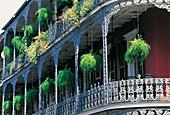Iron cast balconies. New Orleans. Louisiana. USA