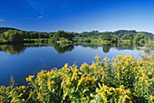 River with Hattingen in the background, Ruhr Valley, Ruhr, Northrhine, Westphalia, Germany