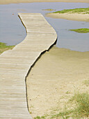 Boardwalk, Boardwalks, Color, Colour, Concept, Concepts, Daytime, Detail, Details, Ecology, Environment, Exterior, Nature, Nobody, Outdoor, Outdoors, Outside, Protect, Protection, River bank, River banks, Riverside, Riversides, Vertical, Water, Wetland,