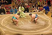 May Sumo tournament in Ryogoku kokugikan. Asakusa.Tokyo. Japan