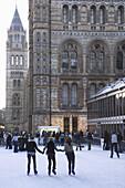 Europe, UK, GB, England, London, Natural History Museum ice skating