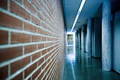 Bearing, Brick, Bricks, Color, Colour, Column, Columns, Concept, Concepts, Corridor, Corridors, Direction, Empty, Illuminated, Illumination, Indoor, Indoors, Interior, Lights, Nobody, Orientation, Perspective, Silence, Wall, Walls, D56-537028, agefotosto