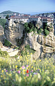 Art, Arts, Color, Colour, Daytime, Europe, Exterior, Flower, Flowers, Geological formation, Geological formations, Greece, Historic, Historical, History, Meteora, Monasteries, Monastery, Mountain, Mountains, Outdoor, Outdoors, Outside, Religion, Rock for