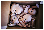 Body, Body part, Body parts, Box, Boxes, Broken, Close up, Close-up, Closeup, Color, Colour, Concept, Concepts, Doll, Dolls, Head, Heads, Idea, Ideas, Indoor, Indoors, Interior, Morbid, Negative, Negative concept, Object, Objects, Odd, Piece, Pieces, Sic
