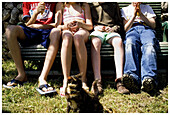 Animal, Animals, Anonymous, Bench, Benches, Boy, Boys, Brother, Brothers, Cat, Cats, Caucasian, Caucasians, Child, Childhood, Children, Color, Colour, Contemporary, Daytime, Domestic cat, Domestic cats, Exterior, Families, Family, Feline, Felines, Felis