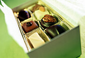 Box, Boxes, Chocolate, Chocolates, Close up, Close-up, Closeup, Color, Colour, Concept, Concepts, Different, Elegance, Elegant, Horizontal, Indoor, Indoors, Interior, Open, Still life, Sweet, Tempt, Temptation, Temptations, Tempting, Varied, Variety, Cat