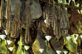 Drying hams suspended from the ceiling. L Orriu , shop of corsican products. Danielle Andréani owner. Porto-Vecchio. South Corsica. Corsica Island. France