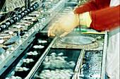 Woman at work unwinding cocoons in a silk factory. Suzhou. Kiangsu province, China