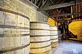 Clos Vougeot castle. The ancient tuns and Cistercian wine presses. Côte de Nuits. Côte d Or. Burgundy. France.