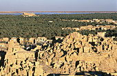 Shali Ghali ancient fortress of Siwa, Lybian desert. Egypt