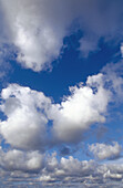 Ätherisch, Atmosphäre, Außen, Blau, Blauer Himmel, Endlos, Farbe, Fliegen, Flucht, Flüchtig, Glatt, Himmel, Hintergrund, Hintergründe, Landschaft, Landschaften, Licht, Luft, Natur, Raum, Ruhe, ruhig, sich Entspannen, Tageszeit, Traum, Unbegrenztheit, Une