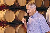Wine taster at cellar. La Rioja. Spain