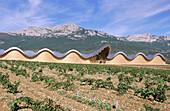 Ysios winery building, by Santiago Calatrava. Rioja alavesa, Euskadi. Spain