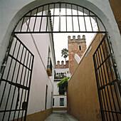 The judería (Jewish quarter), Barrio de Santa Cruz, Seville, Spain