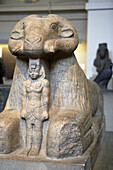 Granite statue of Amun in the form of a ram protecting King Taharqa, Egyptian sculpture, The British Museum, London. England. UK.