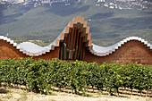 Ysios winery building design by Santiago Calatrava. Laguardia, Rioja alavesa. Alava, Euskadi, Spain