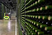 Maturing wine in bottles. Juan Alcorta s Winery. Logroño. La Rioja. Spain