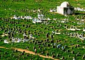 Islamic cemetery. Rabat. Morocco