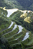 Described as the eighth wonder of the world, carved out of the hillside by Ifugao tribes people 2000 to 3000 years ago, they were declared a UNESCO World Heritage Site in 1995. Banaue rice terraces. Philippines.