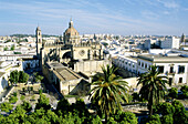 Partial view of Jerez de la Frontera with its 17th century cathedral of San Salvador. Cádiz province, Andalusia, Spain