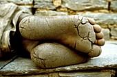 Feet of a porter, China