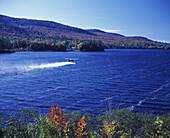 Sightseeing aeroplane, Long Lake, Adirondack Park, New York, USA