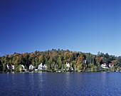Fall foliage, Lake flower, Lake Saranac, Adirondack Park, New York, USA