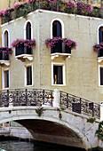 Façade of palazzo along the Grand Canal. Venice. Veneto, Italy