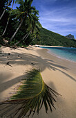 Sandy beach with palm trees, Octopus Bay on Waya Island, Yasawa group, Fiji, South Sea