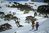Two people on a ski mountaineering tour, acent from Schlink Hut to the Rolling Grounds, Kosciuszko National Park, New South Wales, Australia