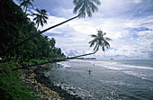 View of the beach, Surf beach after Point Venus, Tahiti, French Polynesia, south sea