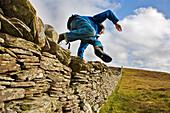 A man jumping over a stone wall on the Island of Bressay, near Lerwick, Shetland Islands, Scottland, Great Britain, UK