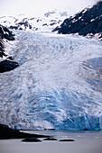 Salmon and bear glaciers. Pacific coast. British Columbia. Canada