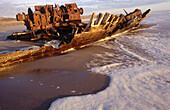 Shipwreck remains. Skeleton Coast. Namib Desert. Namibia