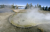 Yellowstone National Park. USA