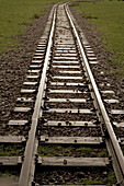 Railway Tracks Leading Off