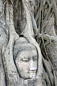 Sandstone Budah. Ayutthaya, Thailand