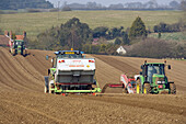 Potatoe planting. Norfolk. UK