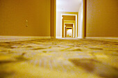 Bottom view, Color, Colour, Concept, Concepts, Confused, Confusion, Corridor, Corridors, Direction, Door, Doors, Doorway, Doorways, Empty, Fitted carpet, Fitted carpets, Floor, Floors, Hall way, Horizontal, Hotel, Hotel lobby, Hotels, Indoor, Indoors, In