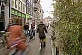 Biker in lane, alley. Amsterdam. Holland.