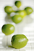 Aliment, Aliments, Citrus fruits, Close up, Close-up, Closeup, Color, Colour, Food, Fruit, Fruits, Green, Healthy, Healthy food, Indoor, Indoors, Inside, Interior, Lime, Limes, Nourishment, Selective focus, Still life, Vertical, D37-341074, agefotostock