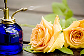 Bottle, Bottles, Close up, Close-up, Closeup, Color, Colour, Concept, Concepts, Drop, Droplet, Droplets, Drops, Flower, Flowers, Glass, Indoor, Indoors, Interior, Jet, Jets, Object, Objects, One, One item, Rose, Roses, Spray, Still life, Thing, Things, Wa