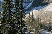 Early winter landscape, Mt. Edith Clavell (3367 m). Jasper National Park. Alberta, Canada