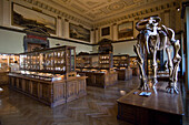 Interior view, Natural History Museum, Museumsquartier, Vienna, Austria