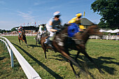 Gallop Race Week, Bad Harzburg, Harz Mountains, Lower Saxony, northern Germany